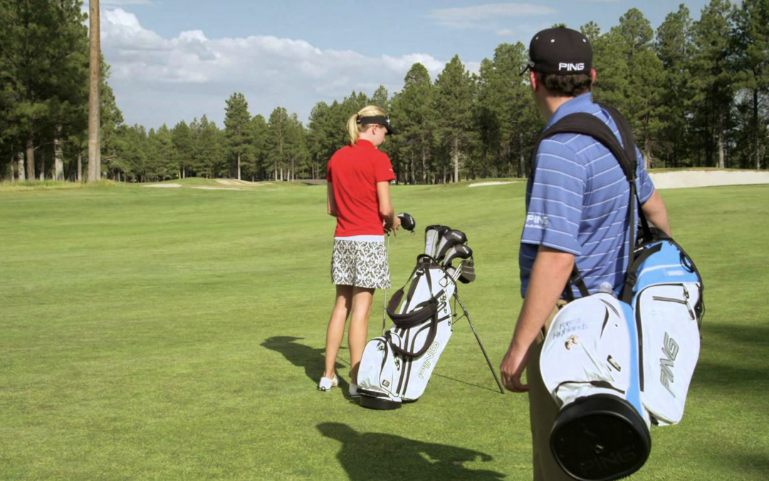 Golf Bags: Carry Bags